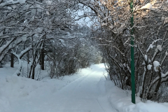 Зимний_Лагерь_Рост_05